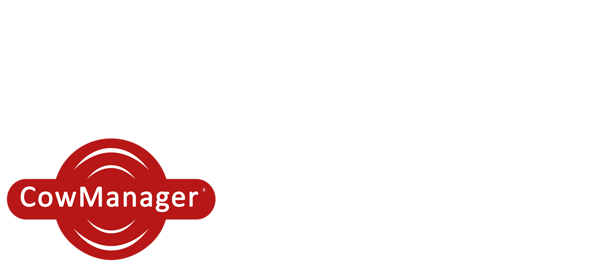 Roadshow Masthead